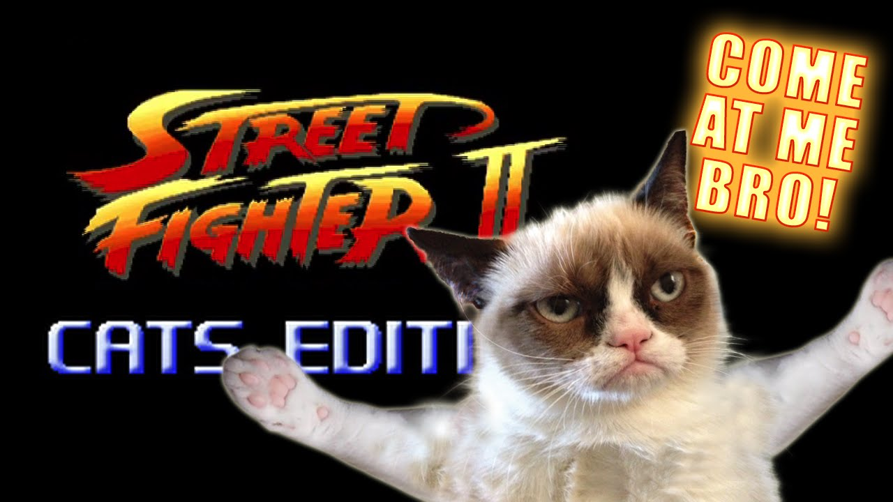 Street Fighter: Cats Edition